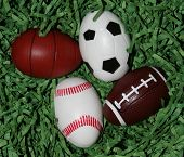 Sports Equipment Eggs