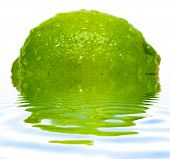 Lime with water drops and reflection on water isolated on white background