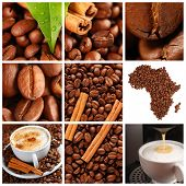 stock photo of coffee crop  - Collage made with coffee beans - JPG