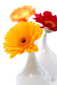image of flower vase  - Three vases with gerbera flowers isolated on white background as interior design element - JPG
