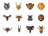 Animal Faces Icon Set. Lion Head Zebra Hippo Giraffe Lion Face Wolf Elephant Head Antelope Meerkat H poster