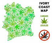 Royalty Free Cannabis Ivory Coast Map Mosaic Of Weed Leaves. Concept For Narcotic Addiction Campaign poster