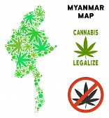 Royalty Free Cannabis Myanmar Map Composition Of Weed Leaves. Concept For Narcotic Addiction Campaig poster