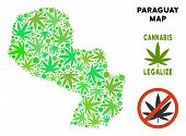 Royalty Free Marijuana Paraguay Map Mosaic Of Weed Leaves. Concept For Narcotic Addiction Campaign A poster