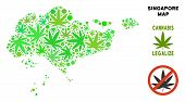 Royalty Free Cannabis Singapore Map Mosaic Of Weed Leaves. Concept For Narcotic Addiction Campaign A poster