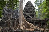 Ancient Stone Ruin Of Banteay Kdei Temple, Angkor Wat, Cambodia. Ancient Temple And Old Tree. Angkor poster