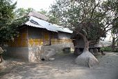 stock photo of sundarbans  - A simple house in Bengali village - JPG