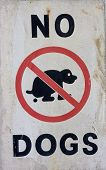 A No Dogs Sign
