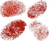 Vector Fingerprints