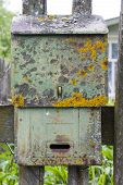 Old Green Mailbox Covered With Moss And Lichen. poster
