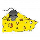Cartoon Mouse With A Piece Of Cheese. Vector Of Cheese And Mouse. Hand Drawn Cartoon Mouse With Chee poster
