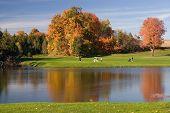 Vista de golfe