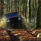 Car Racing In Autumn Forest. Suv Or Offroad Car On Path Covered With Leaves Crossing Puddle With Wat poster