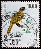 A 10-rupee Stamp Printed In Sri Lanka