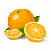 Fresh Oranges With Leaves. Whole Orange, Half Orange And Slice Of Orange Vector Illustration. Orange poster