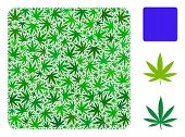 Filled Square Mosaic Of Weed Leaves In Various Sizes And Green Tinges. Vector Flat Weed Items Are Or poster