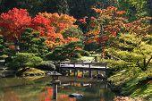 Arboretum, japanischer Garten #1