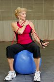 Senior Health And Fitness Bicep Exercise