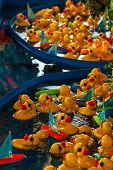Carnival-Fair Images Rubber Ducks