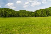 Springtime Velka Fatra Mountains Scenery With Meadow And Hills Covered By Deep Forest Above Krpelany poster