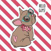 Bulldog Portrait. Cool Retro Pop Art Placard Baby Animal Funny Puppy Pet Vector Hand Drawn Style. Bu poster