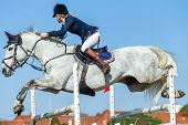 Equestrian Rider Woman Unrecognizable And Horse White Gray Pony Mid Flight Jumping Gate Poles Closeu poster