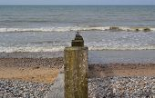 On the Beach at ~ Camber Sands ~