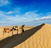 Rajasthan travel background - India cameleer (camel driver) with camels in dunes of Thar desert. Jai