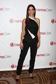 LAS VEGAS - APR 18:  Sandra Bullock at the Twentieth Century Fox Photo Line at the Caesars Palace on April 18, 2013 in Las Vegas, NV