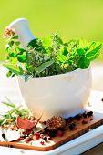 Постер, плакат: Свежие травы в ступке здоровая пища концепция альтернативной медицины