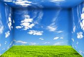 Room with green grass on floor and sky on wall. Nature