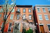 stock photo of brownstone  - West Village New York City apartments in the springtime - JPG