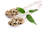 Green coffee beans in wooden spoons and leaves isolated on white