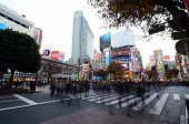 Tokyo - November 28: Crowds Of People Crossing The Center Of Shibuya