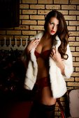 Beautiful young woman in in sexual red lingerie posing in Christmas decorations.