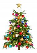 Joyfully Colorful Christmas Tree