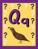 stock photo of nouns  - Flash Card Letter Q nouns - JPG