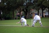 Cricket Sweep Shot