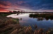 Dramatic Sunrise Over Swamp In Holland