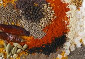 image of chillies  - Asian curry spices - JPG