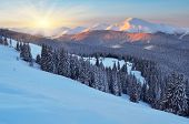 Winter landscape in the mountains at dawn. Carpathian Mountains, Ukraine, Europe