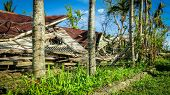 foto of cebu  - House destroyed by storm Haiyan in Cebu Philippines.