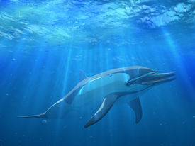 stock photo of cetacea  - 3 d Dolphin under water with bubbles - JPG