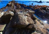 Form of the rock of Hiraiso Cretaceous coast, Japan