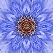 Blue Concentric Flower Center Mandala Kaleidoscopic Design