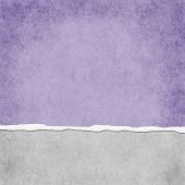 Square Light Purple Grunge Torn Textured Background