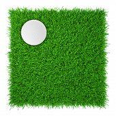 golf ball on grass. realistic grass. close up.