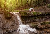 foto of dhanurasana  - Woman practices yoga in nature the waterfall - JPG
