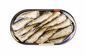 Sprats In A Tin