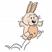 jumping rabbit cartoon illustration